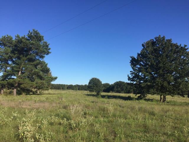 8500 Hwy 19 North, ATHENS, TX 75752 (MLS #86691) :: Steve Grant Real Estate