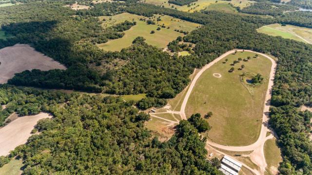 5448 State Hwy 31 E, MURCHISON, TX 75778 (MLS #86708) :: Steve Grant Real Estate