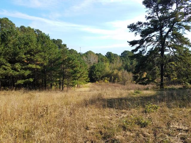 10851 Fm 314 North, BROWNSBORO, TX 75756 (MLS #87067) :: Steve Grant Real Estate