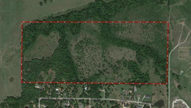 0000 Luther, GUN BARREL CITY, TX 75156 (MLS #87174) :: Steve Grant Real Estate