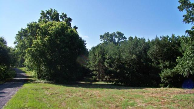 0 Cr 4325, LARUE, TX 75770 (MLS #87193) :: Steve Grant Real Estate