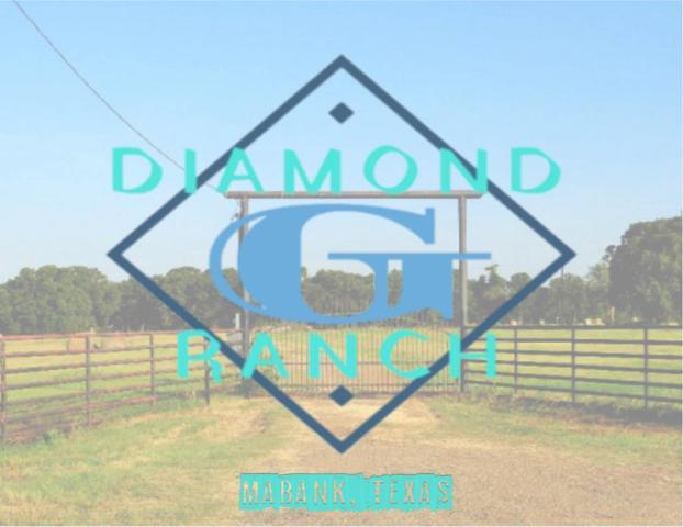2473 Fm 90, MABANK, TX 75147 (MLS #87229) :: Steve Grant Real Estate