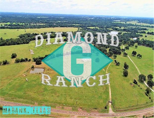2473 Fm 90, MABANK, TX 75147 (MLS #87230) :: Steve Grant Real Estate