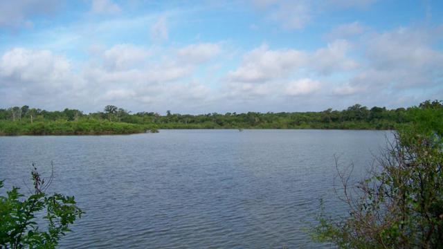 TX 274 State Hwy 274, TRINIDAD, TX 75163 (MLS #87437) :: Steve Grant Real Estate