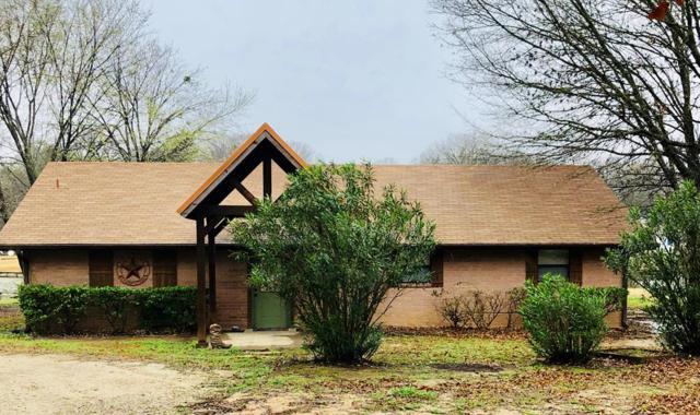 132 Armada Loop, PAYNE SPRINGS, TX 75156 (MLS #87504) :: Steve Grant Real Estate