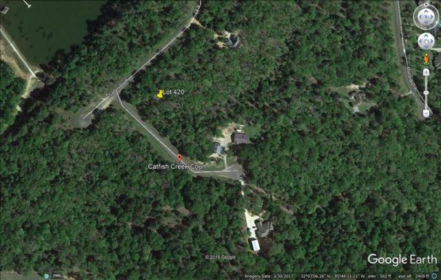 Lot 420 Catfish Creek Ct, LARUE, TX 75770 (MLS #87507) :: Steve Grant Real Estate