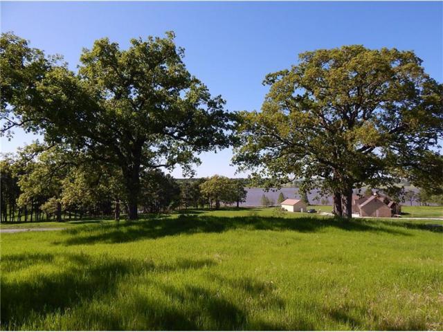291 Wildlife Way, ATHENS, TX 75752 (MLS #87748) :: Steve Grant Real Estate