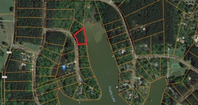 179 Trophy Point, LARUE, TX 75770 (MLS #87754) :: Steve Grant Real Estate