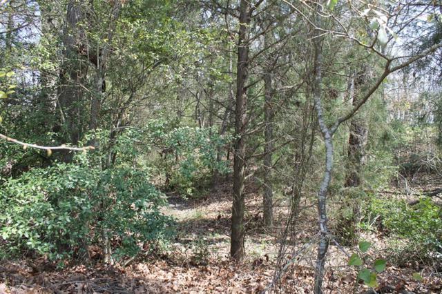 0 Michael Lane, EUSTACE, TX 75124 (MLS #87815) :: Steve Grant Real Estate