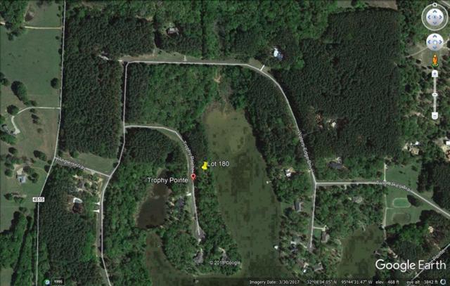 Lot 180 Trophy Pointe, LARUE, TX 75770 (MLS #87938) :: Steve Grant Real Estate