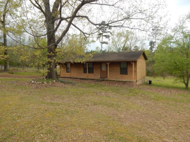 1785 Wendy Rd, DIANA, TX 75640 (MLS #88046) :: Steve Grant Real Estate