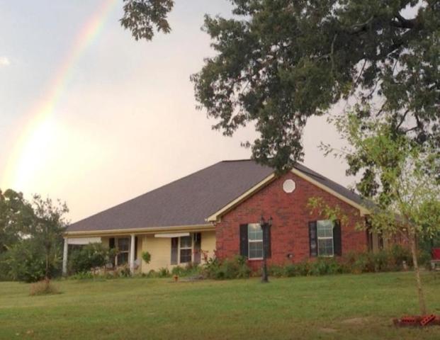 16447 S State Hwy 19, ELKHART, TX 75839 (MLS #88157) :: Steve Grant Real Estate