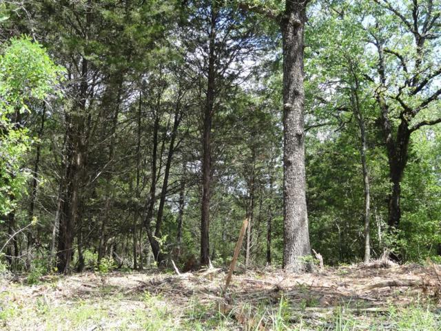LOT M Hidden Acres Road, EUSTACE, TX 75124 (MLS #88281) :: Steve Grant Real Estate