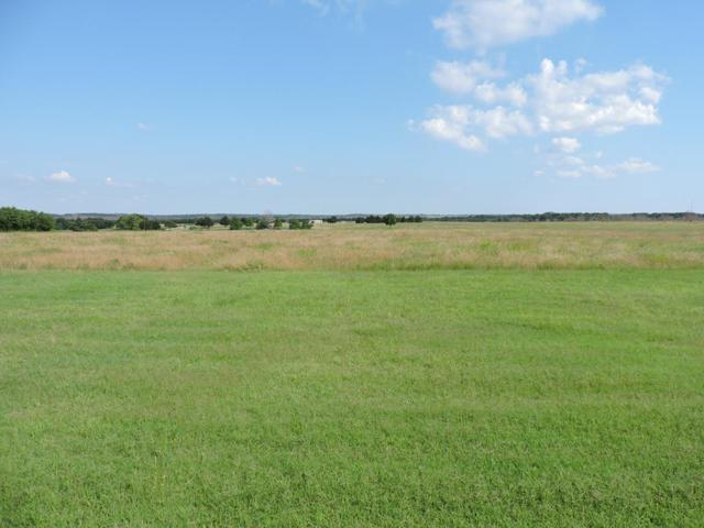 0 Ne Cr 0240, CORSICANA, TX 75110 (MLS #88557) :: Steve Grant Real Estate