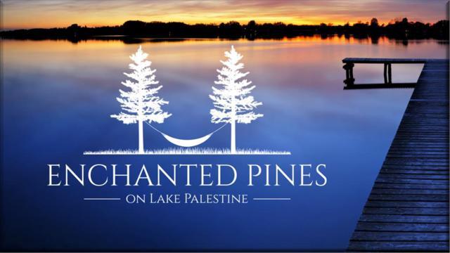 21553 Joe Paul Lane, CHANDLER, TX 75758 (MLS #88570) :: Steve Grant Real Estate