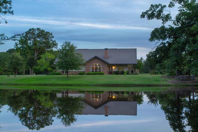 13761 Cr 3802, MURCHISON, TX 75778 (MLS #88598) :: Steve Grant Real Estate
