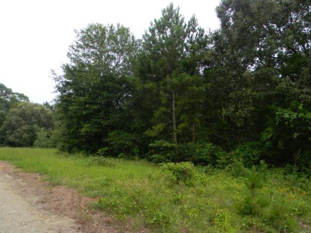 3773 Fm 1861, WALTON, TX 75752 (MLS #88754) :: Steve Grant Real Estate