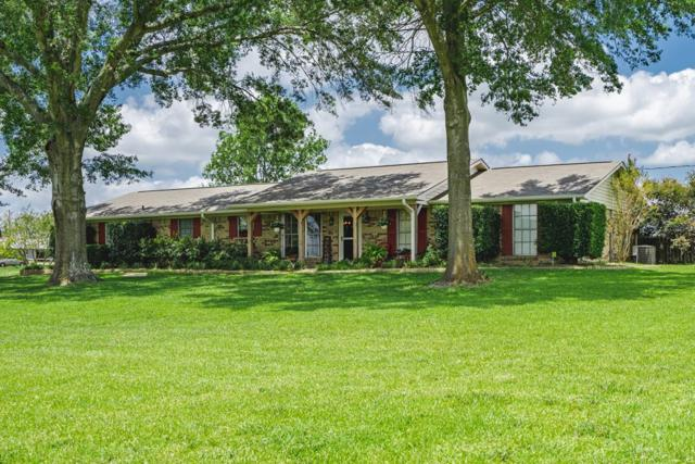 9789 Fm 804, LARUE, TX 75770 (MLS #88974) :: Steve Grant Real Estate