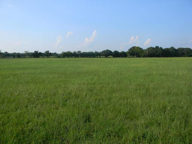 1823 Cr 4826, ATHENS, TX 75752 (MLS #89159) :: Steve Grant Real Estate