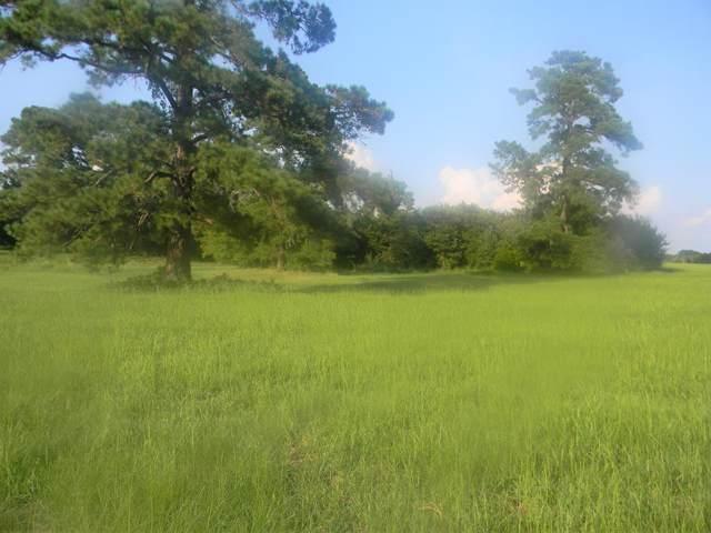 1657 Cr 4825, ATHENS, TX 75752 (MLS #89164) :: Steve Grant Real Estate