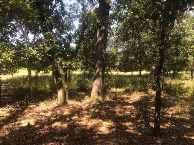Lot 358 Zebra Crossing, LARUE, TX 75770 (MLS #89251) :: Steve Grant Real Estate