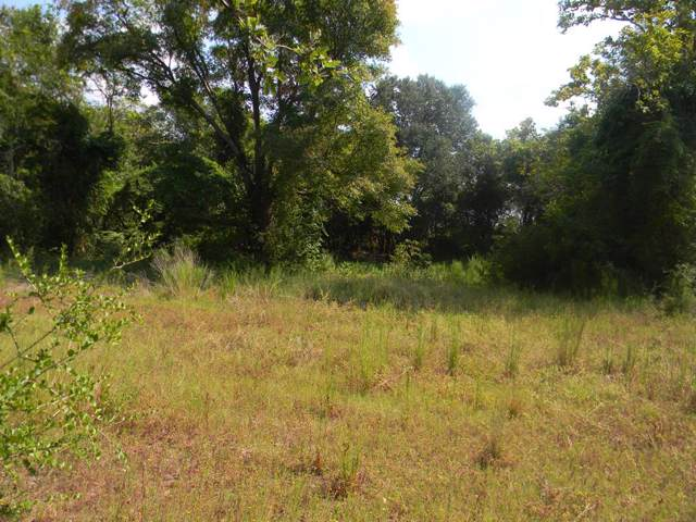 2101 Patterson Rd, ATHENS, TX 75751 (MLS #89438) :: Steve Grant Real Estate