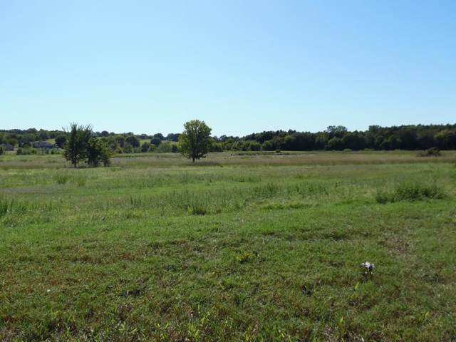 000 Grand View Drive, ATHENS, TX 75752 (MLS #89811) :: Steve Grant Real Estate