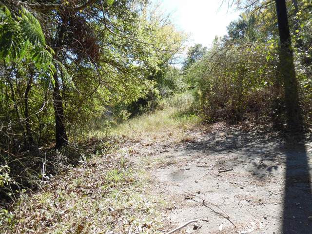 00 Hwy 31 West, MALAKOFF, TX 75148 (MLS #89960) :: Steve Grant Real Estate