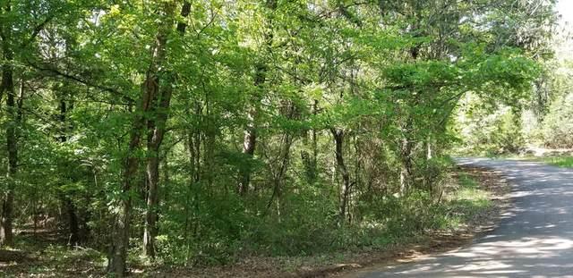 00 Cedar Oaks, MABANK, TX 75156 (MLS #91041) :: Steve Grant Real Estate