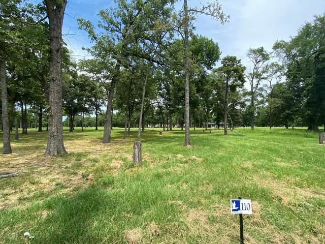 243 Saint Andrews, MABANK, TX 75156 (MLS #91526) :: Steve Grant Real Estate