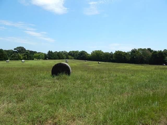 TBD Fm 315, POYNOR, TX 75782 (MLS #91776) :: Steve Grant Real Estate