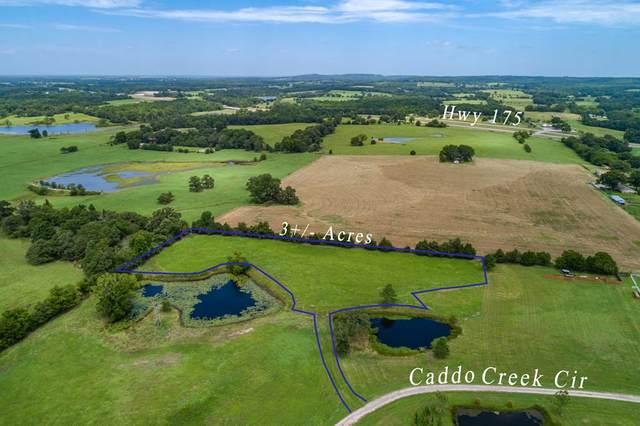 13965 Caddo Creek Circle, LARUE, TX 75770 (MLS #91870) :: Steve Grant Real Estate