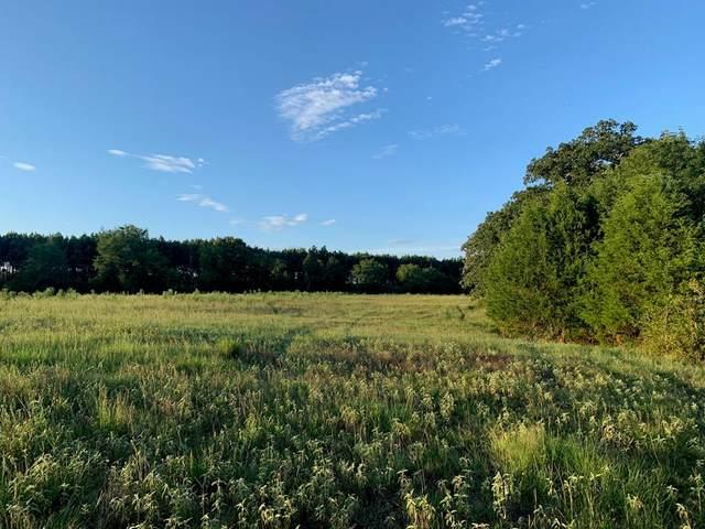 10110 Fm 2709, EUSTACE, TX 75124 (MLS #91902) :: Steve Grant Real Estate