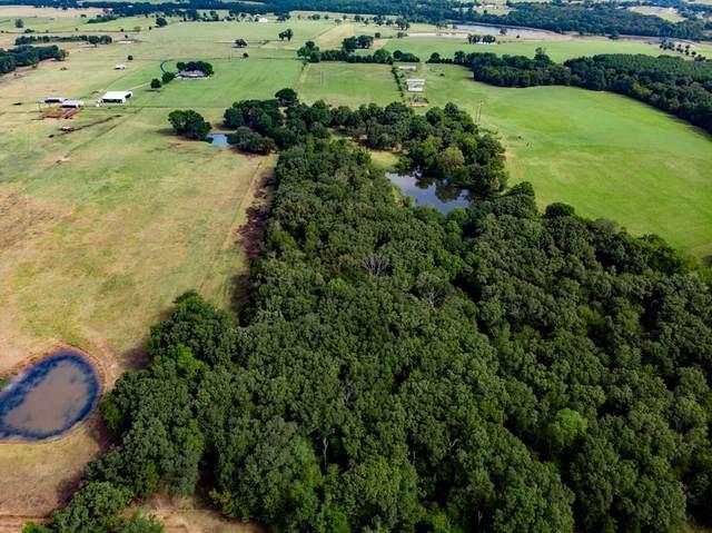 0 Goodell Lane, EUSTACE, TX 75124 (MLS #92106) :: Steve Grant Real Estate