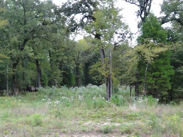 Tract L Cr 1429, EUSTACE, TX 75124 (MLS #92355) :: Steve Grant Real Estate