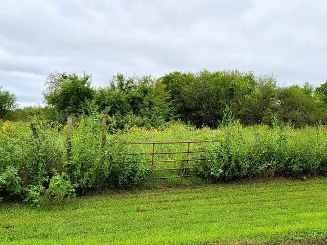 0 Cheryl Lane, KAUFMAN, TX 75142 (MLS #92408) :: Steve Grant Real Estate