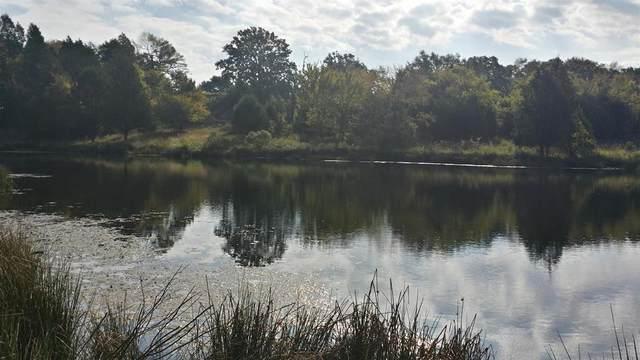 170 Lago Vista Drive, ATHENS (AREA), TX 75752 (MLS #92430) :: Steve Grant Real Estate