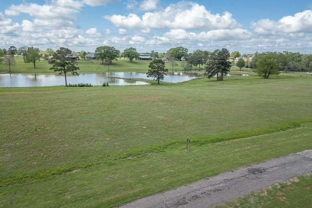 14725 Caddo Creek Circle, LARUE, TX 75770 (MLS #93811) :: Steve Grant Real Estate