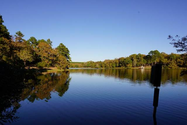 230 Safari Shores Drive, ATHENS (AREA), TX 75770 (MLS #93820) :: Steve Grant Real Estate