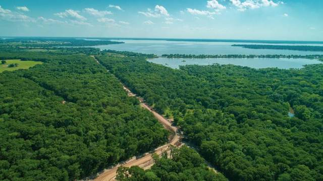 105 Lakeview Tr, MABANK, TX 75147 (MLS #93848) :: Steve Grant Real Estate