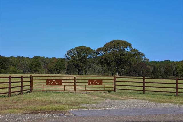 00 County Road 1653, BEN WHEELER, TX 75147 (MLS #94042) :: Steve Grant Real Estate