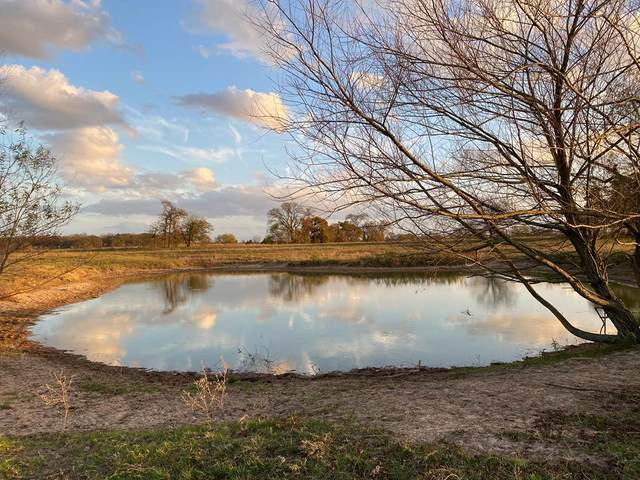 TBD Vzcr 2518, CANTON, TX 75103 (MLS #94226) :: Steve Grant Real Estate