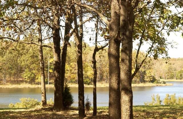 362 Zebra Crossing, ATHENS (AREA), TX 75770 (MLS #94228) :: Steve Grant Real Estate