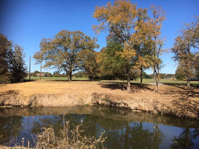 B3,L29 Lakewood Road, TRINIDAD, TX 75163 (MLS #94496) :: Steve Grant Real Estate
