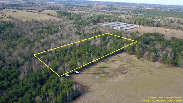 0 County Road 264D, HENDERSON, TX 75652 (MLS #94499) :: Steve Grant Real Estate