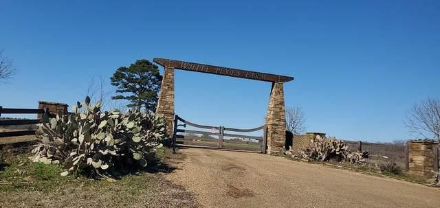 250 Vzcr 4707, BEN WHEELER, TX 75754 (MLS #94657) :: Steve Grant Real Estate
