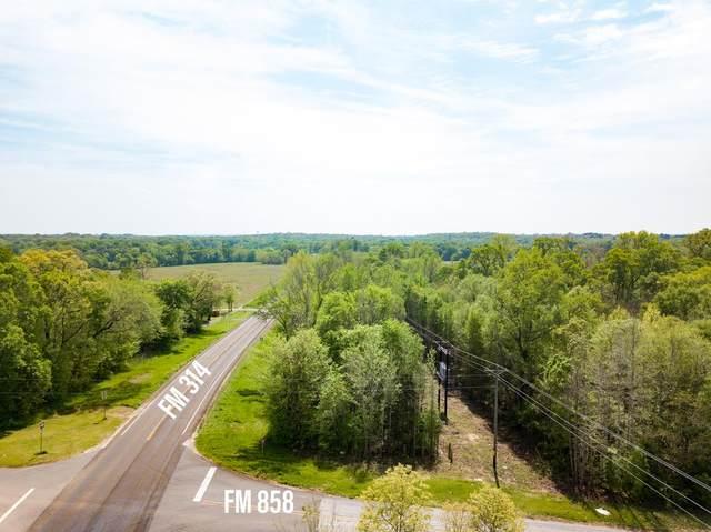 00 Fm 858, VAN, TX 75754 (MLS #94718) :: Steve Grant Real Estate