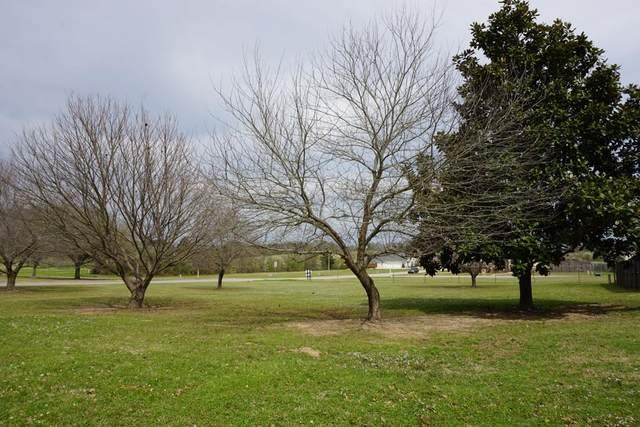 901 Wellington, ATHENS, TX 75751 (MLS #94811) :: Steve Grant Real Estate