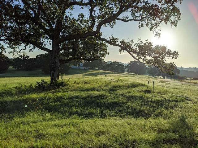Lot 283 Early Morning Drive, ATHENS, TX 75751 (MLS #94935) :: Steve Grant Real Estate