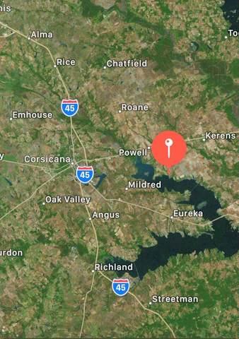 TBD Pearl Valley Dr, KERENS, TX 75144 (MLS #95095) :: Steve Grant Real Estate